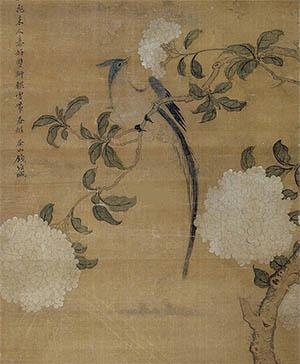 钱维城 《绶带鸟绣球花》
