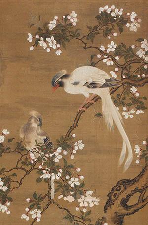 蒋廷锡 《樱花绶带鸟》